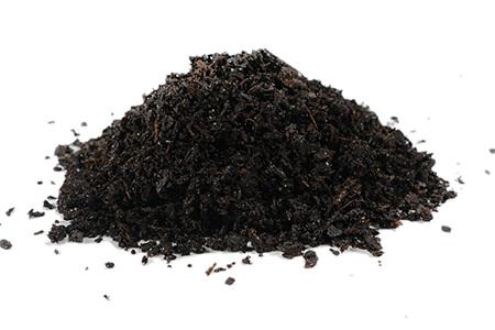 DSC00872-organic-garden-soil